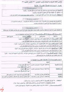ملخص للغة العربية للمقبلين علي البكالوريا الشعب العلمية (في النحو والأنماط  القيم)