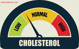 Diet plan to lower cholesterol and lose weight
