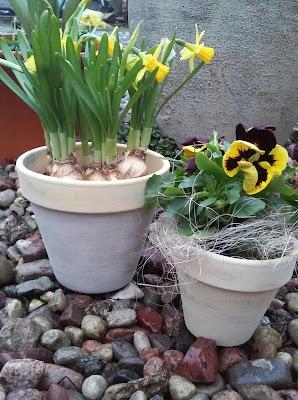 Przytulny Dom Zdobimy Doniczki I Pojemniki Na Kwiaty