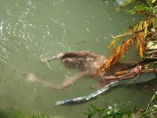 Encuentran cuerpo de un hombre en aguas de río Biran en Barahona
