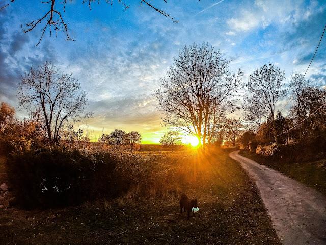 zonsondergang in de herfst