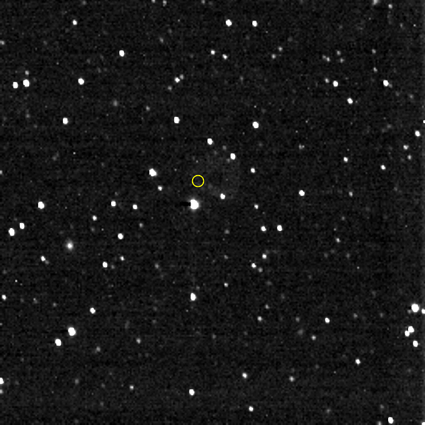 From its vantage point in the Kuiper Belt, NASA's New Horizons spacecraft took this image in the direction of the distant Voyager 1 robotic probe (whose location is marked with the yellow circle)...on December 25, 2020.