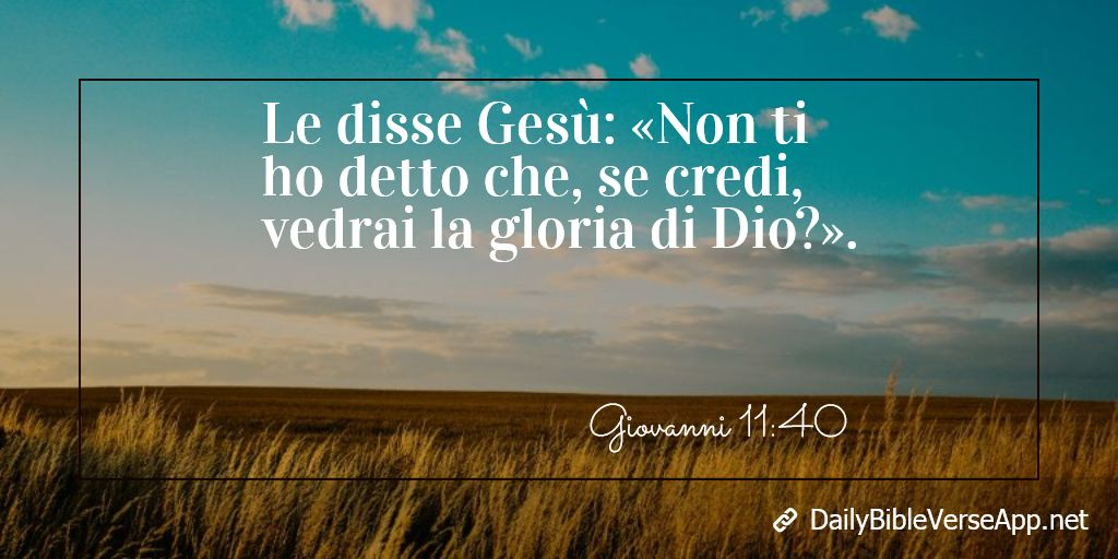 Le disse Gesù: «Non ti ho detto che, se credi, vedrai la gloria di Dio?».