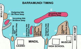 SECRET BARRAMUNDI by Hiro Nakamura: Where to fish by the