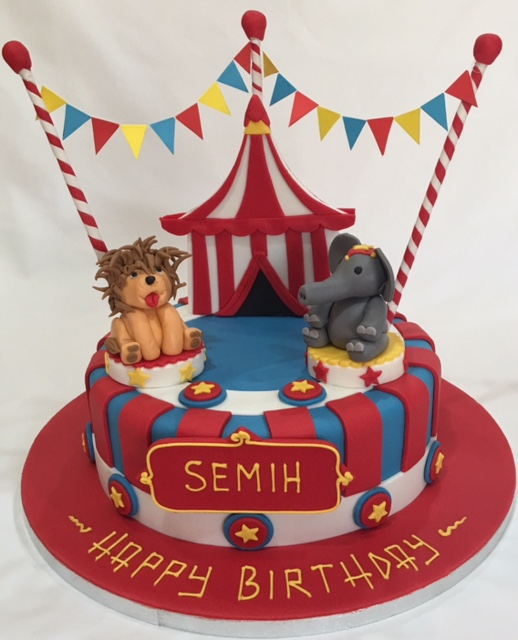 Circus Themed Package For A One Year Old Boy