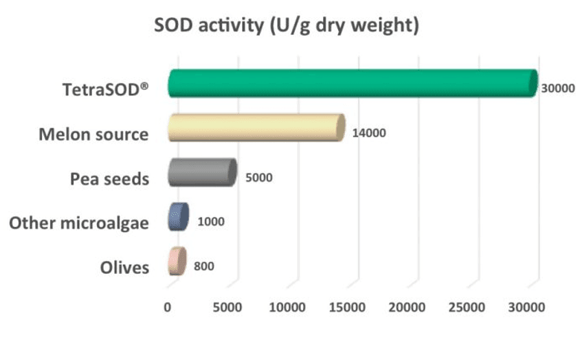 SOD activity comparison