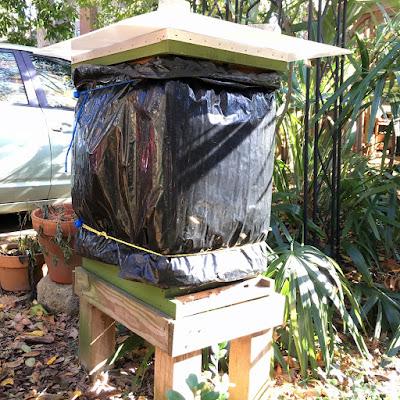 arctic oscillation, bee, bee cozy, beekeeping, hive wrap, respiration, temperature, ventilation, winter,