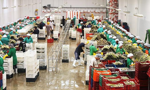 Empleos sector exportación