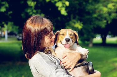 7 dicas para ganhar a confiança do seu cachorro