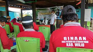 Sekolah Lapang Penguatan SDM Petani Desa Pallimae Kec Sabbangparu