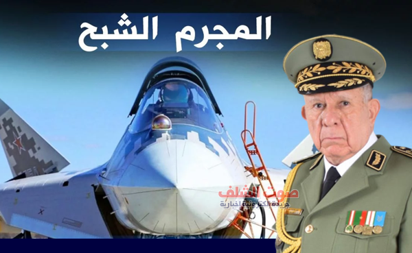 """الجيش الجزائري يقتني """"المجرم"""" الروسي و14 مقاتلة شبح"""