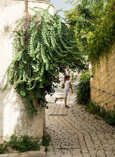 Scicli, centro storico, piante di capperi enormi  ©Valeriaderiso