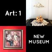 Art: 1 New Museum