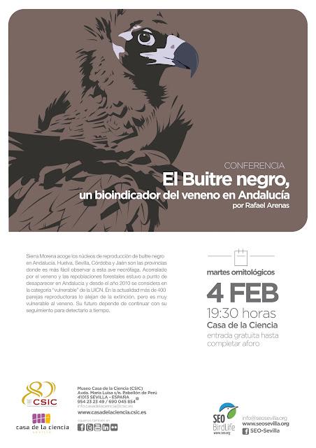 Conferencia: El Buitre negro, un bioindicador del veneno en Andalucía. Por Rafael Arenas, 4 de Febrero 2020. Grupo Local SEO-Sevilla.
