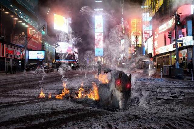 Chú sóc diễn sâu trở thành nạn nhân chế ảnh mới của các thợ photoshop dạo