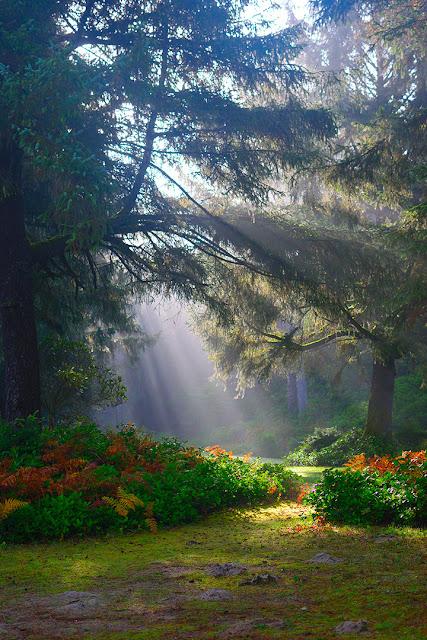 اجمل الصور الخلفيات الطبيعية فى العالم لشاشه الجوال 19