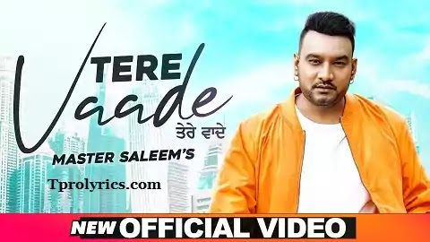 Tere Vaade Lyrics in Punjabi Font | Master Saleem, Neha Sani | Bhavya Arora