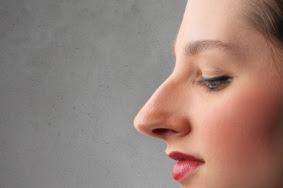 Arti Hidung panjang pada wanita