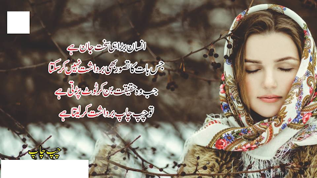 poetry status, poetry urdu, poetry whatsapp status, poetry sad, poetry tik tok, poetry pics, poetry status sad, poetry pashto, poetry slam, poetry about love, poetry about father,