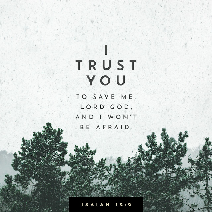 Verse of The Day- I trust you Oh Lord.