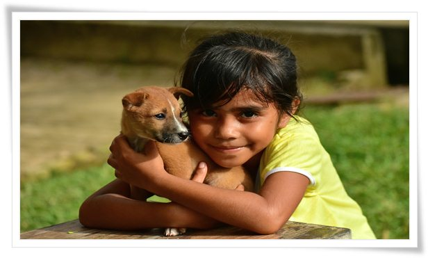 puppy training,obedience training,dog training,puppy obedience training,obedience,maltipoo obedience training,puppy,training,puppy obedience,puppy training 101,puppy training tips,puppy training basics,dog obedience training,puppy obedience training tips,basic obedience puppy training,puppy dog training,puppy obedience training at home,puppy training schedule,doberman puppy training obedience,cane corso puppy obedience training