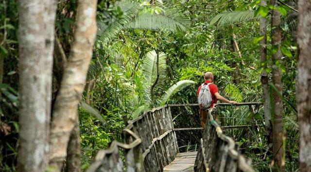 Hutan Bakau Margomulyo