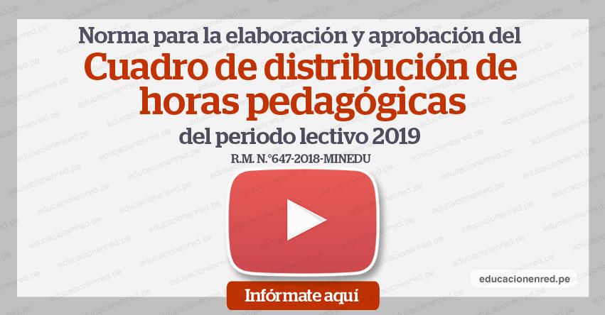MINEDU: Elaboración y Aprobación del Cuadro de Distribución de Horas Pedagógicas 2019 [VIDEO] www.minedu.gob.pe
