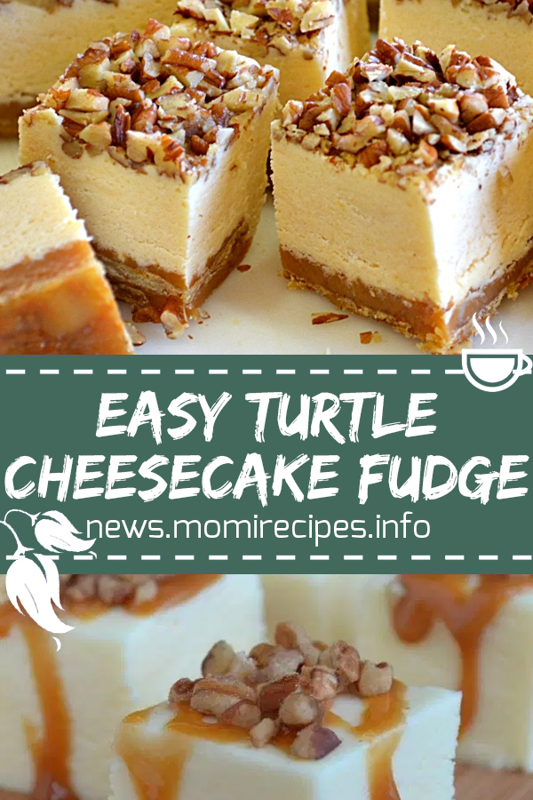 Easy turtle cheesecake fudge | dessert, dessert recipes, easy dessert recipes, easy desserts, dessert dishes, desserts to make, desserts recipes, easy baking recipes, easter desserts, easy desserts to make, dessert ideas, holiday desserts, quick and easy desserts, quick desserts, healthy desserts, simple desserts, fruit desserts, yummy desserts, good desserts. #turtlecake #cheesecake #fudge