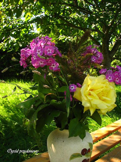 Matki Boskiej Zielnej, ogród przydomowy