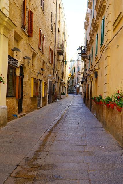 Le Chameau Bleu - rue  d'Alghero