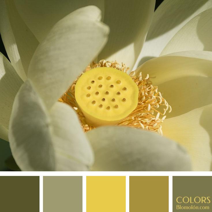 variedad_en_color_paletas_de_colores_104