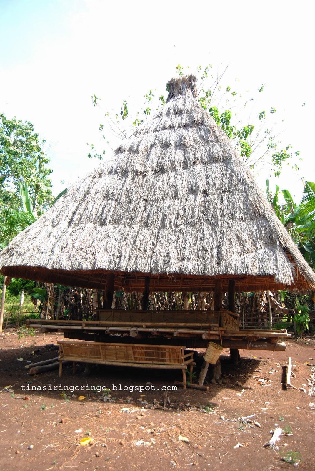 940+ Gambar Rumah Adat Alor Gratis Terbaru