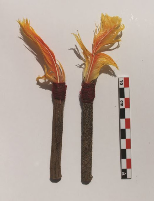 Archaeologists find first naturally mummified llamas sacrificed by the Inca at Tambo Viejo, Peru