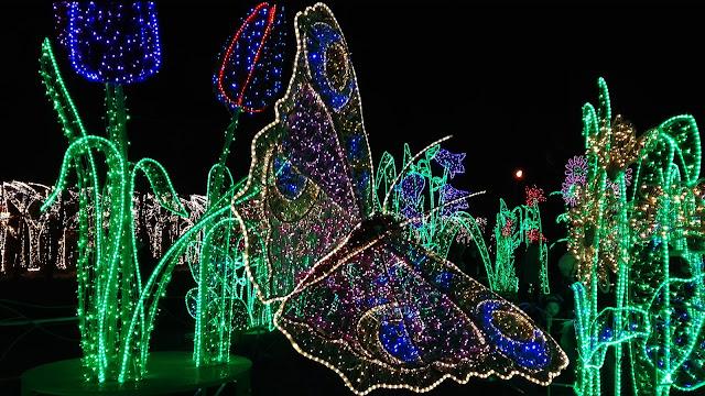 Królewski Ogród Światła w Wilanowie - zwiedzanie