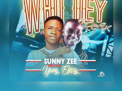 DOWNLOAD MP3: Sunny Zee Ft Yung Efissy - Who dey Refix