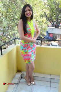 Telugu Actress Prasanna Stills in Short Dress at Inkenti Nuvve Cheppu Press Meet Stills  0187.JPG