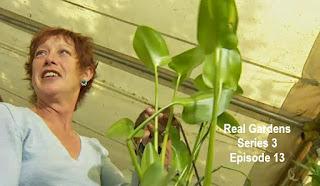 Real Gardens: Episode 13
