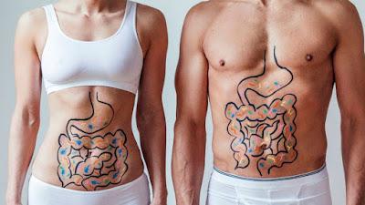 Microbiota e intensidad alimentación