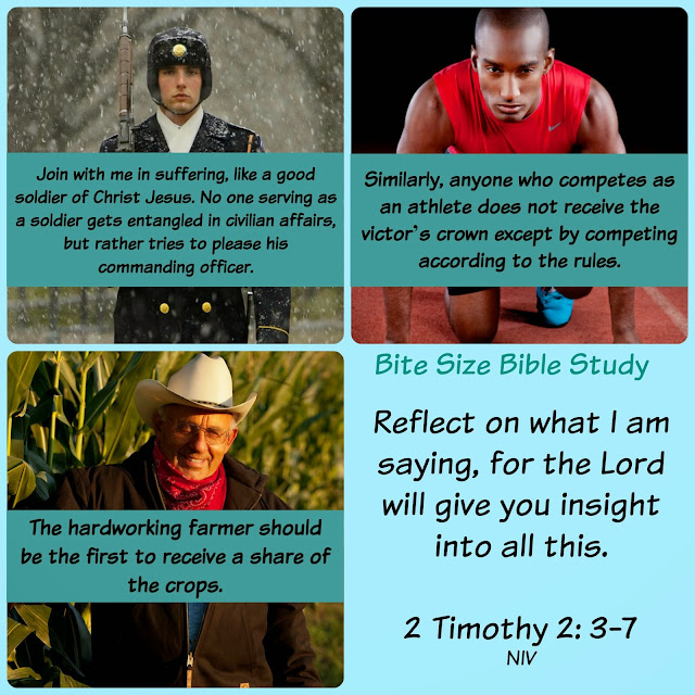 1 Timothy 2:1-7, reflect on solider farmer athlete