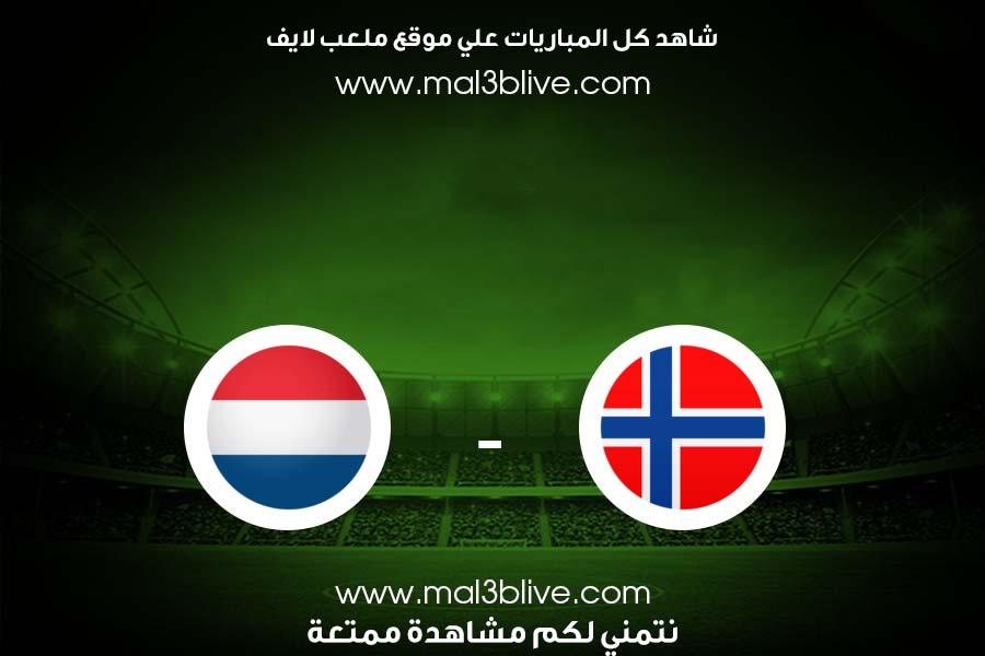 مشاهدة مباراة هولندا والنرويج