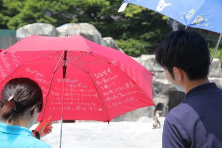 レインコート、傘無料貸し出し、日本平動物園