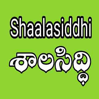 Shaalasiddhi in Schools