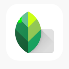 Snapseed For Mac Download