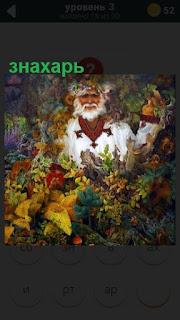 мужчина знахарь с бородой в середине разных растений стоит