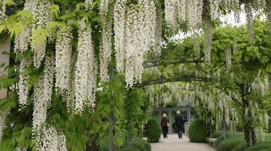Jardines del Museo del Impresionismo de Giverny