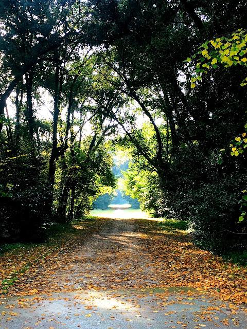 palace-gardens-caserta