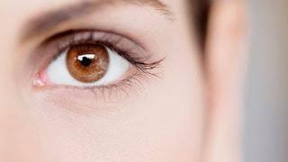Cara Menjaga Kesehatan Mata Dengan Buah – Buahan