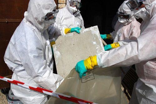 asbestos testing companies near me