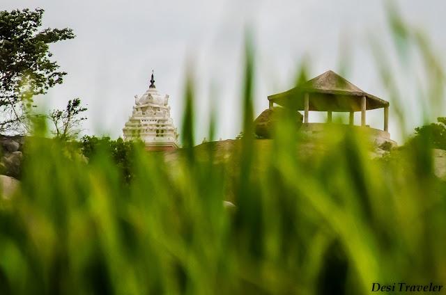 temple near paddy fields