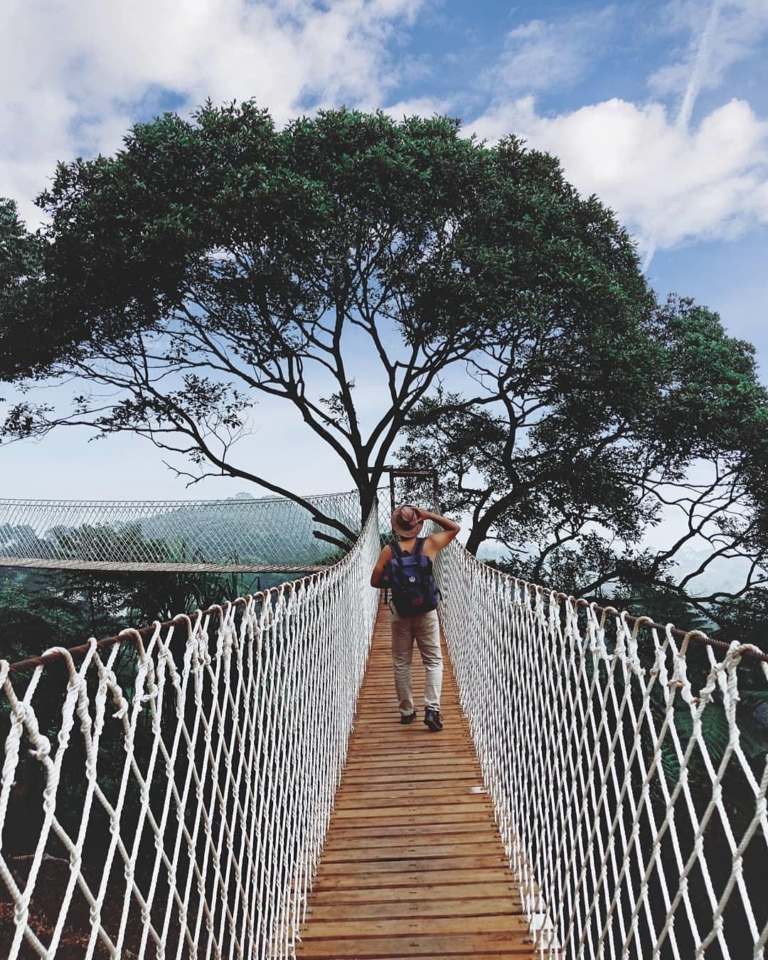 Spot Foto Jembatan Gantung Bukit Halimun Bogor